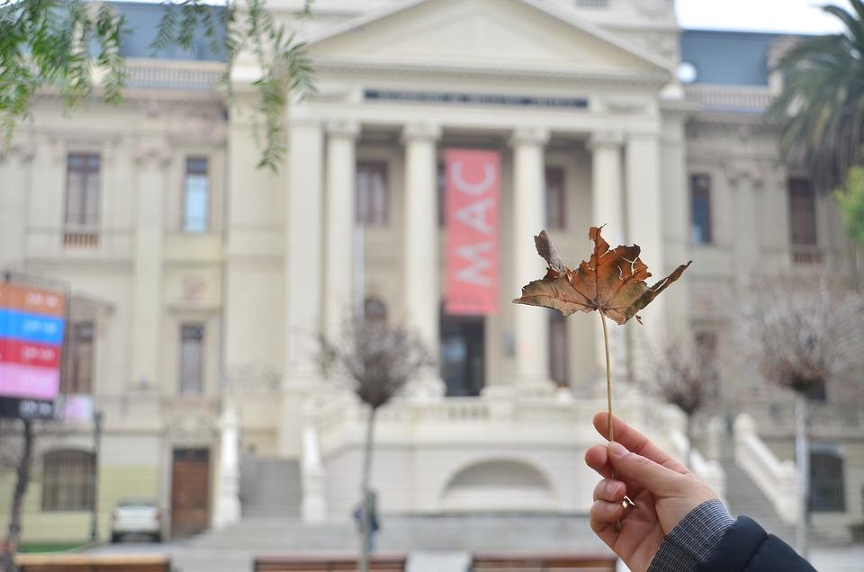 Building, Government, Leaf