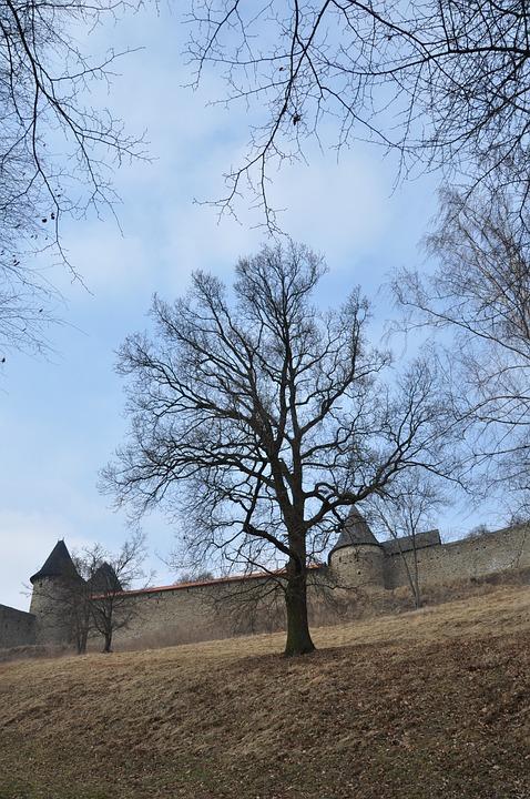 Castle, Monument, Architecture, Building, Tree