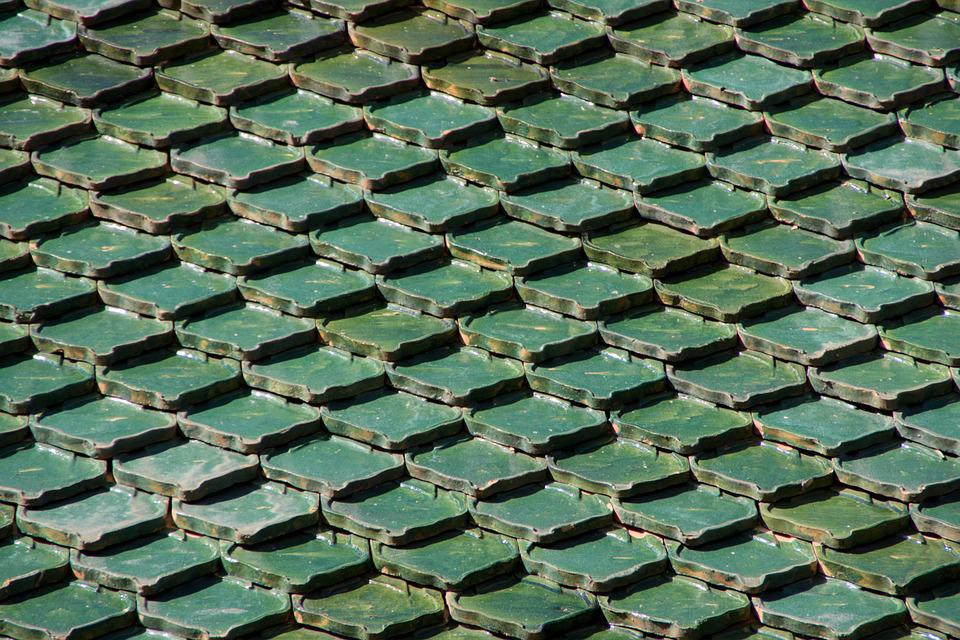 Roof, Tenerife, Loropark, Green, Building