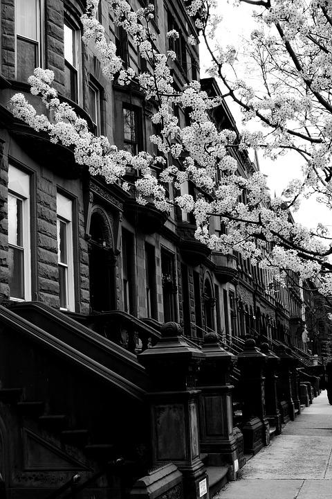 Harlem, Street, Black And White, City, Building