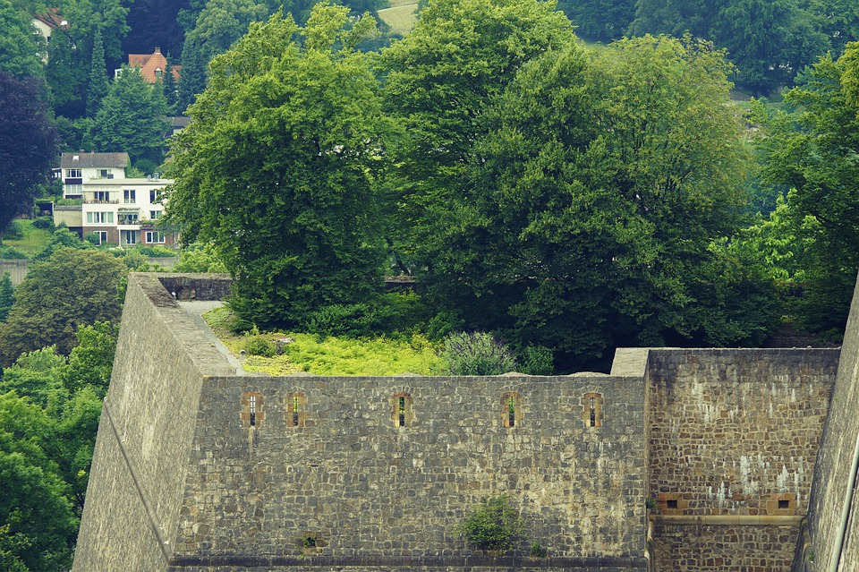 Building, Wall, Architecture, Castle, Tree, Grass
