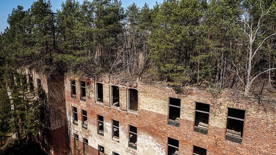 Old, Building, Brick, Window, Nature, Leave, Break Up