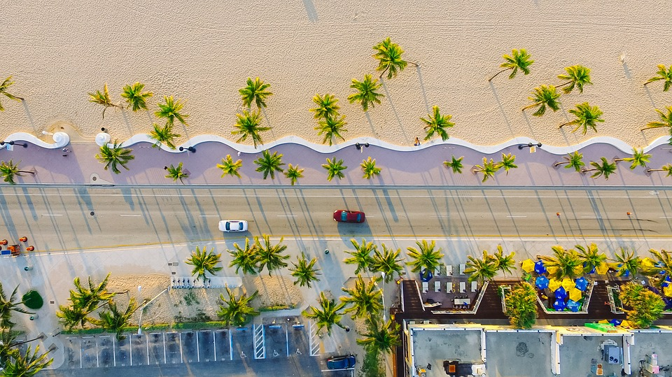 Buildings, Cars, Palm Trees, Road, Sand, Top View