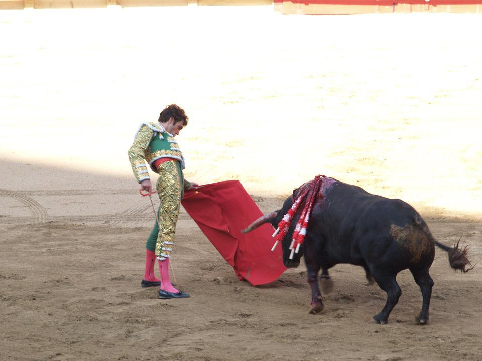 Torero, Bulls, Spain, Bullfights, Matador