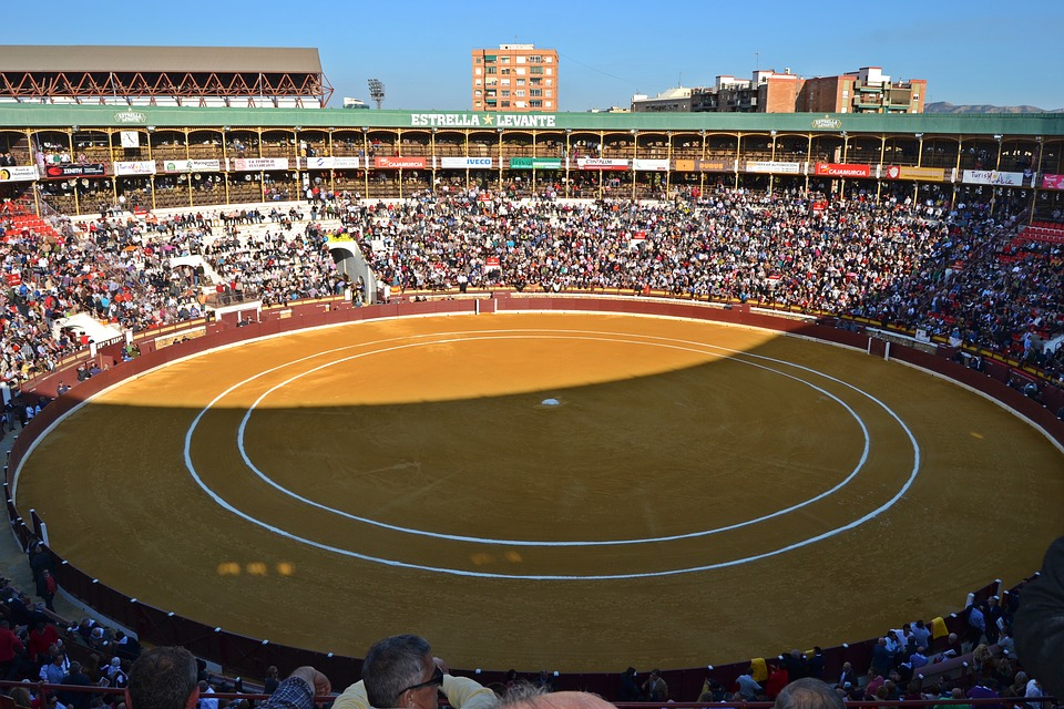 Murcia, Bulls, Bullring, Plaza Toros, Plaza, Spain