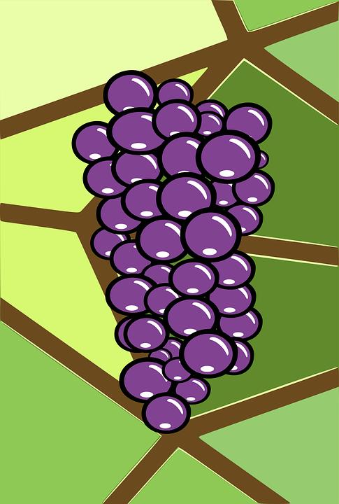 Brown, Bunch, Grape, Green, Leaf, Leaves, Plant, Purple