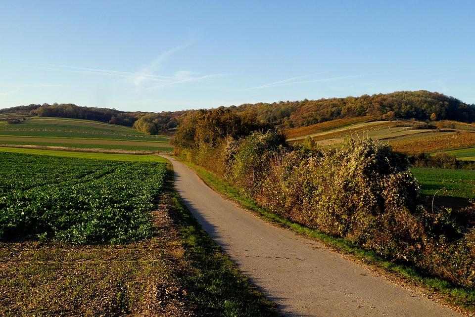 Austria, Burgenland, Path, Fields, Autumn