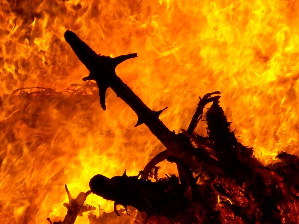 Fire, Burn, Geiss, Flame, Brand, Wood Fire