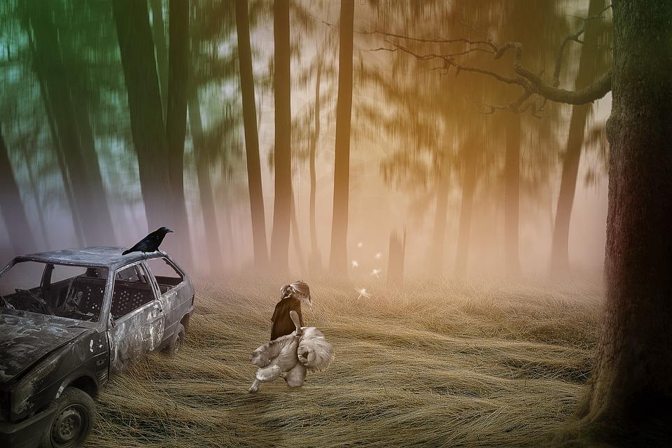 Fantasy, Forest, Girl, Teddy Bear, Burned Car, Fog