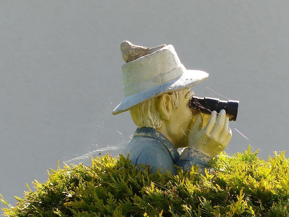 Binoculars, Bush, Sensing, Stalk, Man, Garden, Figure