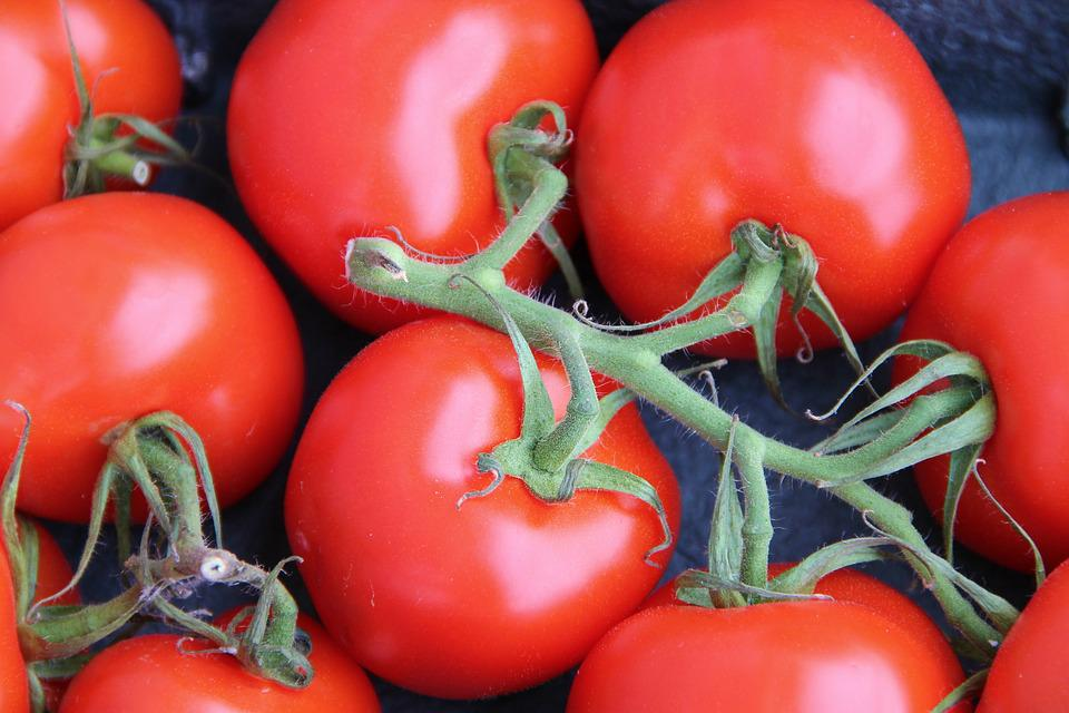 Bush Tomatoes, Trusses, Tomatoes, Vegetables, Food, Red