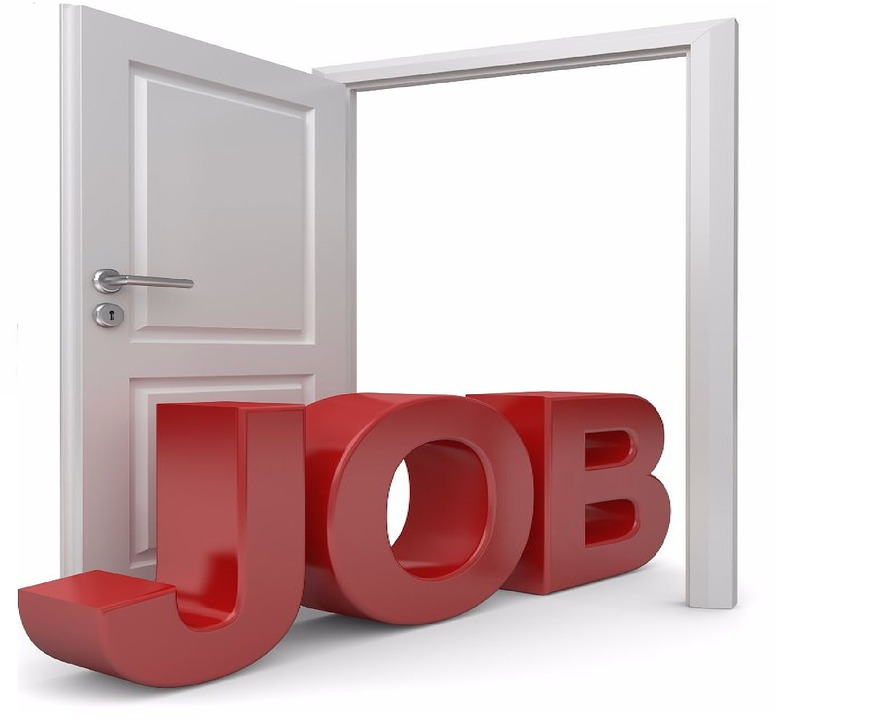 Show, Isolated, Business, Jobs, Door, Search, Employee