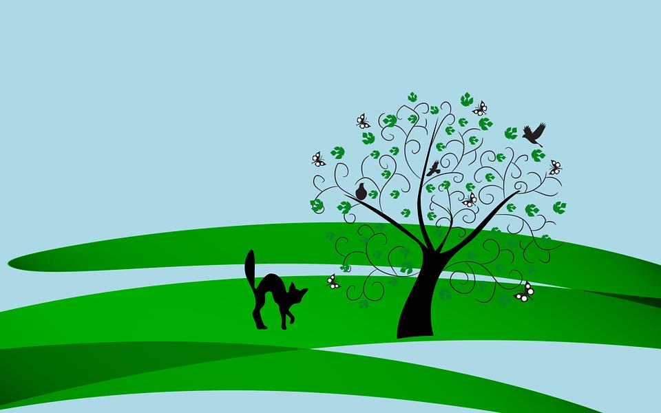 Tree, Cat, Birds, Butterflies, Spring, Background