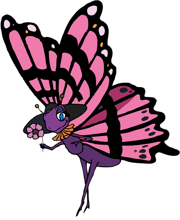 Butterfly, Cartoon, Flower