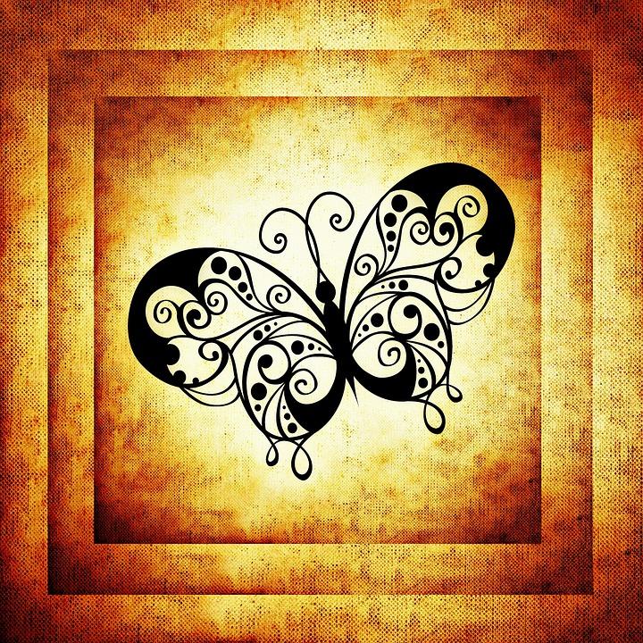 Butterfly, Frame, Image, Framed