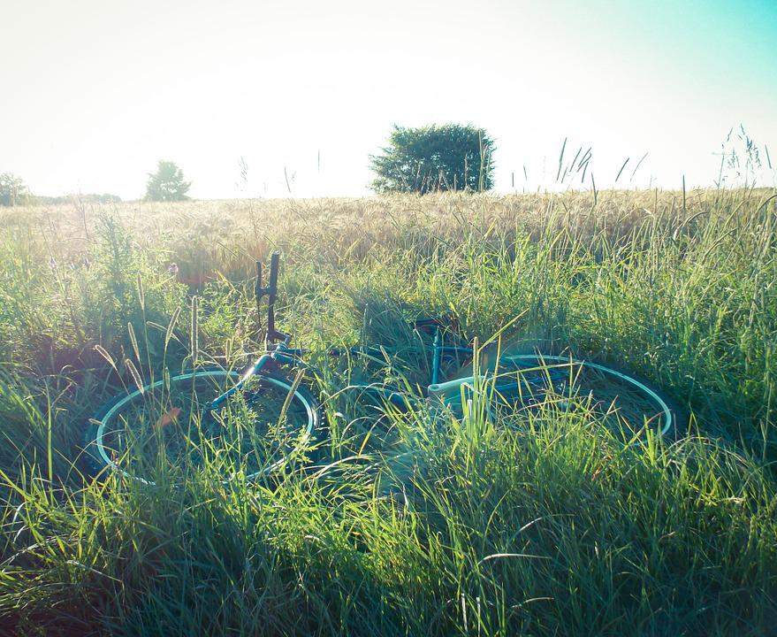 Bike, Field, Freedom, Scenery, Mood, Tour, By Bike