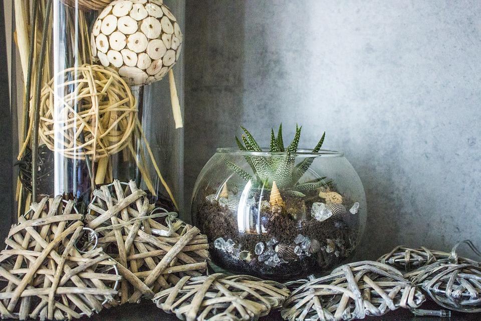 Decoration, Still Life, Wood, Cactus, Potpourri