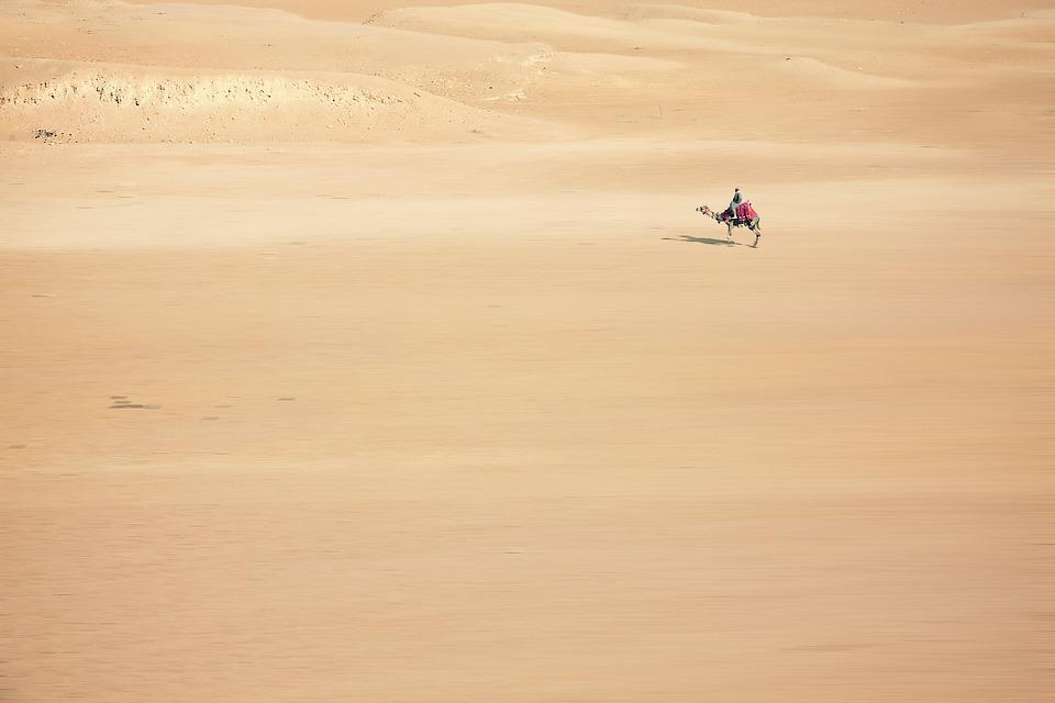 Sand, Camel, Desert, Cairo, Egypt, Africa, Desert Ship