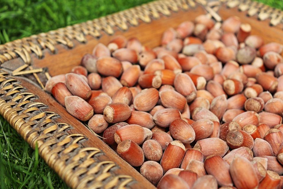 Hazelnut, Nuts, Hazel, Fruit, Brown, Food, Eat, Cake