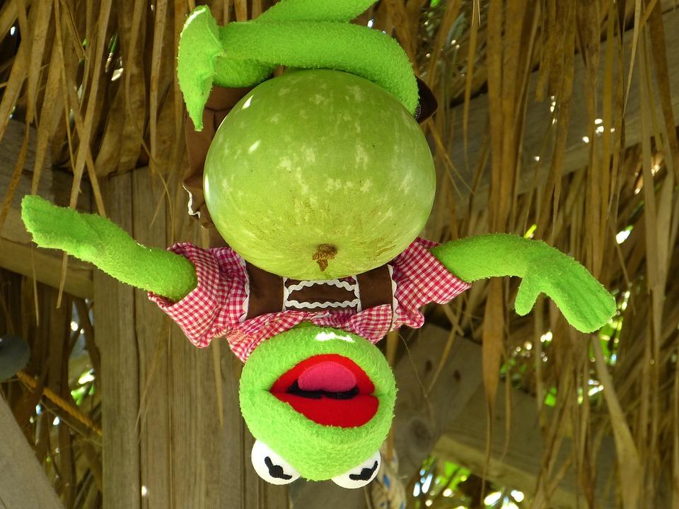 Kermit, Frog, Calabash, Pumpkin, Green, Depend
