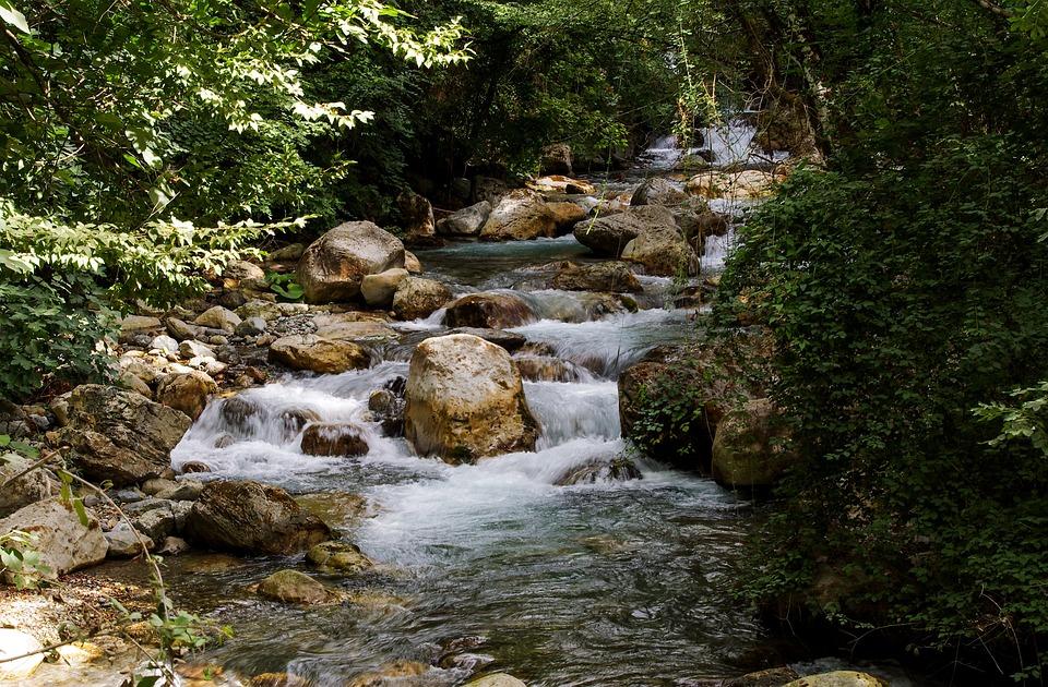 Orsomarso, Calabria, Torrent, Argentine Stream, Water