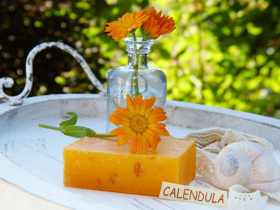 Soap, Calendula, Marigold, Flowers, Health, Decoration