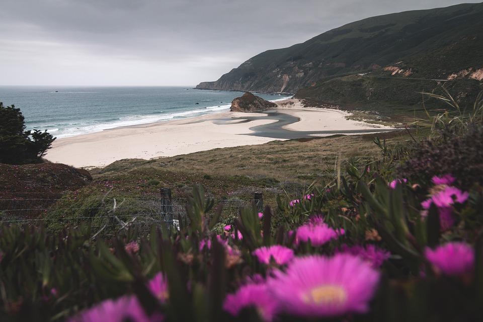Landscape, Sanfrancisco, California, Idyllic, Beach
