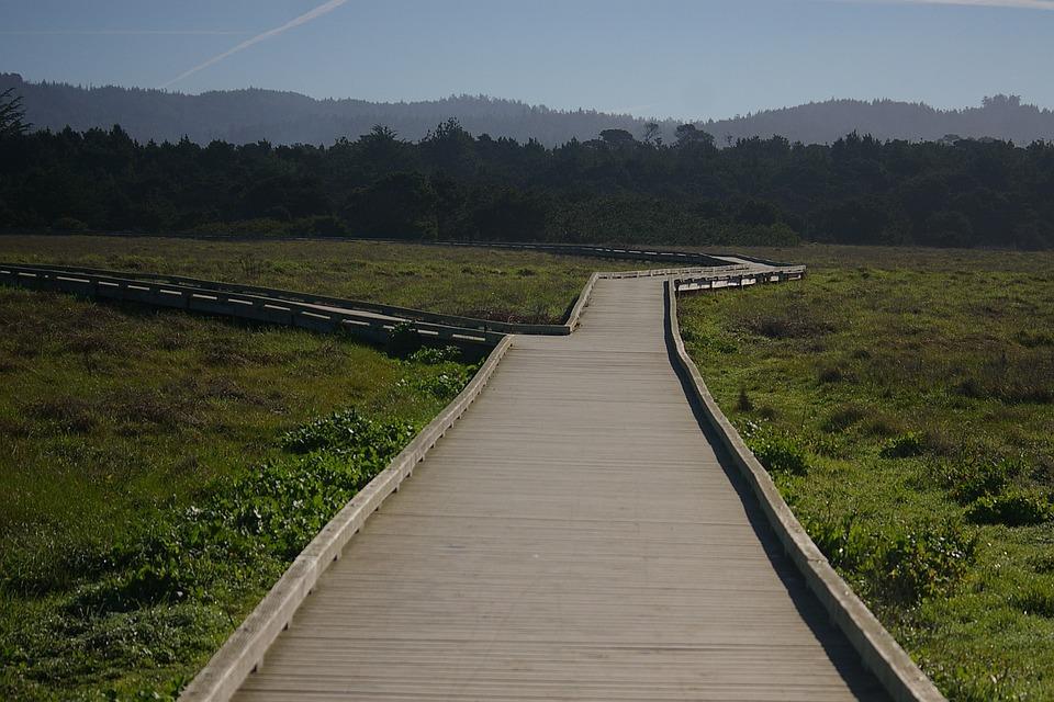 Mackerricher State Park, California, Boardwalk