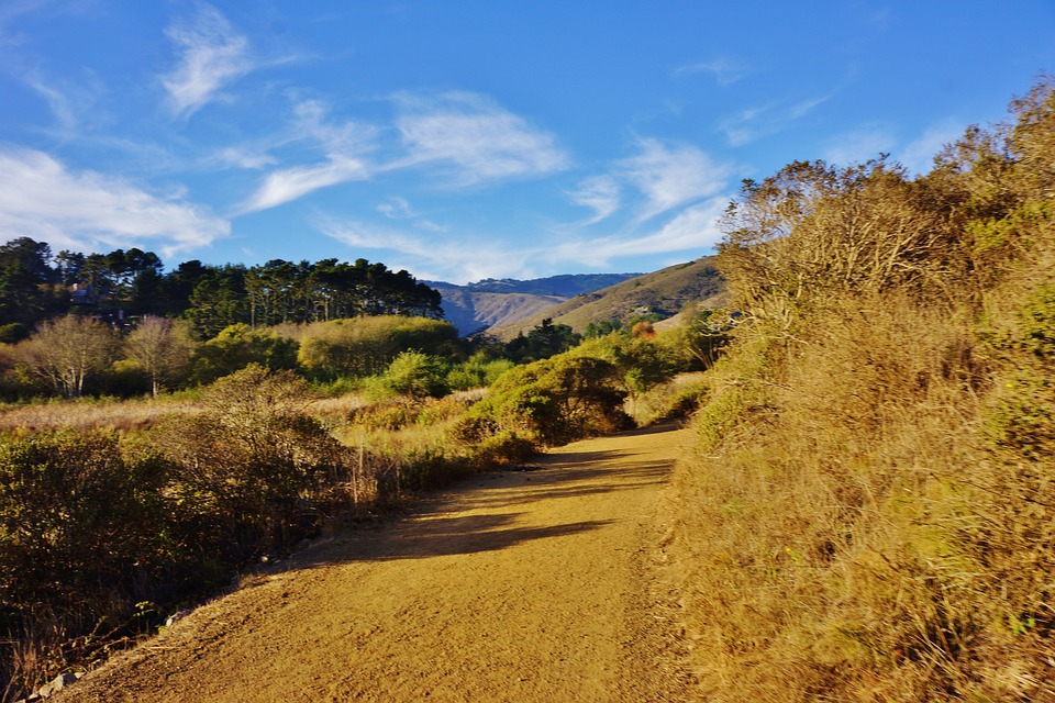 Muir Beach, California, Marin County, Landscape