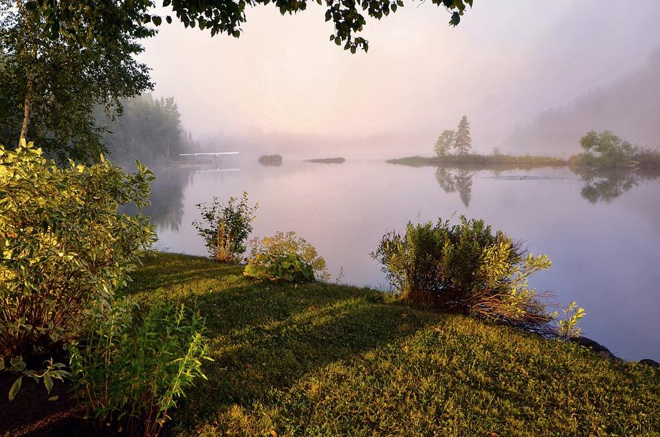 Landscape, Mist, Nature, Morning, Fog, Calm, Contrast