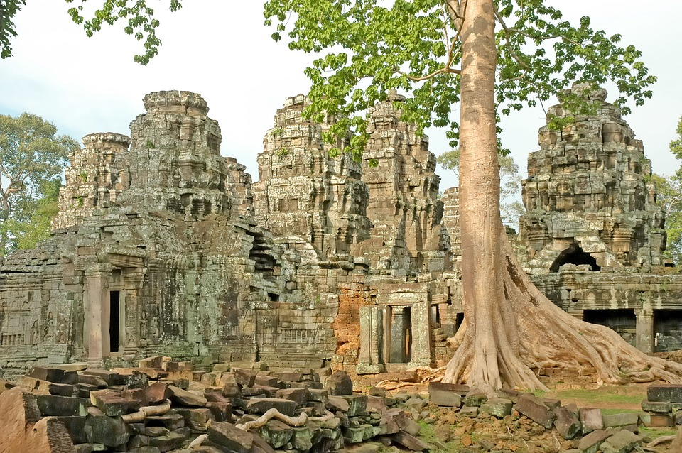 Cambodia, Temple, Angkor Wat, Roots, Asia