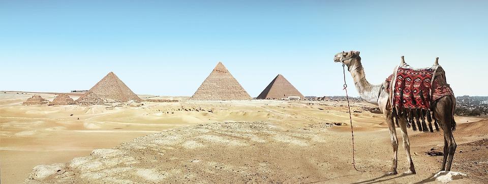 Desert, Camel, Sand, Pyramid, Dry, Travel, Pharaohs