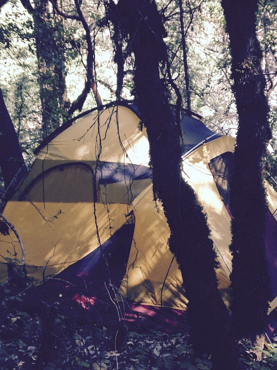 Tent, Camping, Woods, Camping Tent, Travel, Vacation