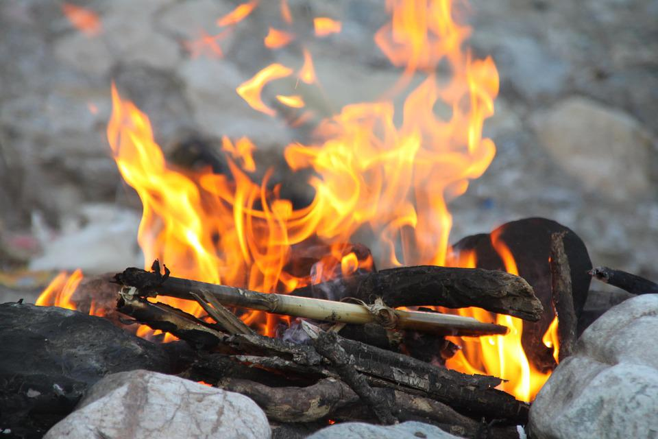 Fire Woods Camping Nature Forest Travel Active