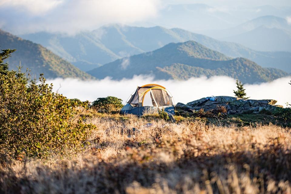 Adventure, Camp, Camping, Foggy, Grass, Hazy, Hike