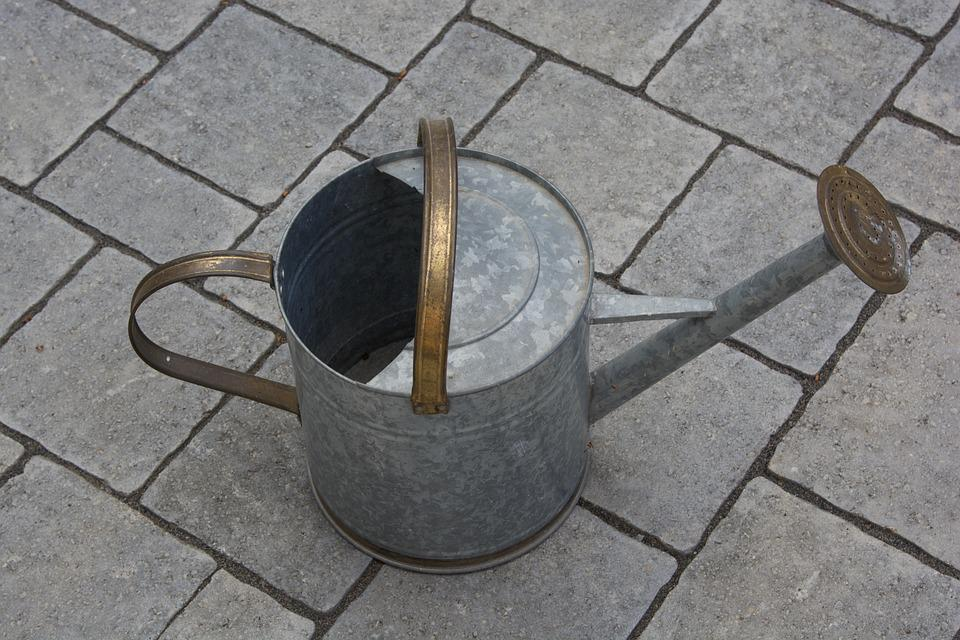 Water, Can, Watering Can, Water Can, Gardening