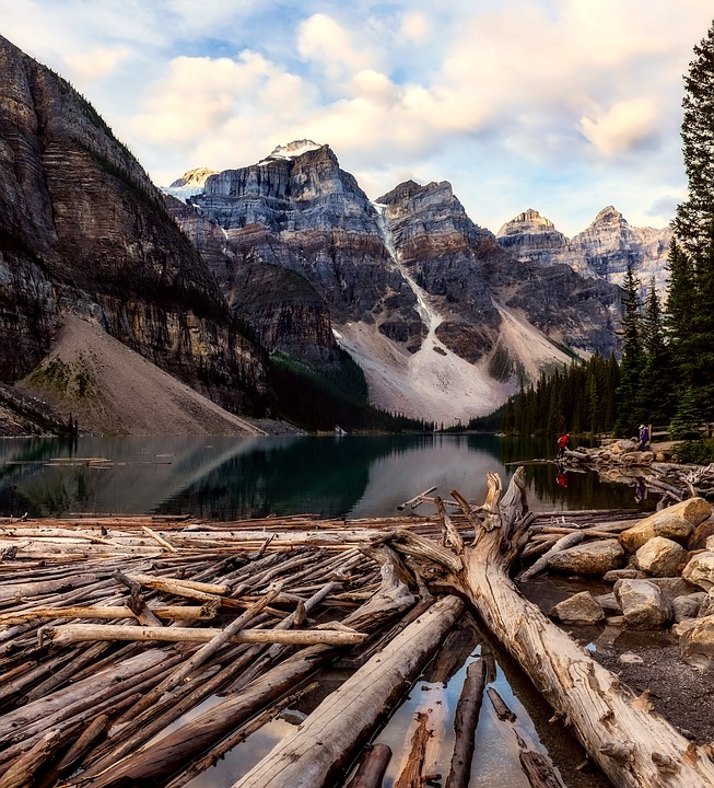 Banff National Park, Canada, Deadwood, Timber, Lake