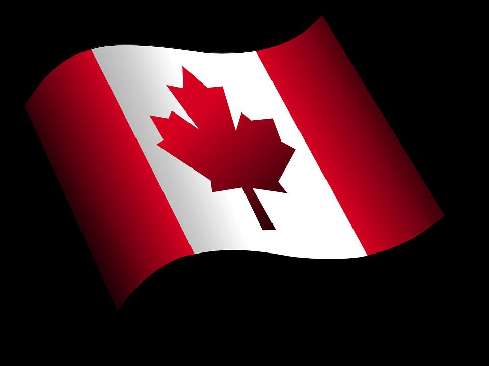 Canada, Flag, Leaf, Maple