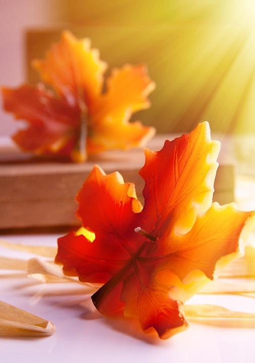Autumn, Autumn Leaf, Candle, Windlight, Wick, Mood
