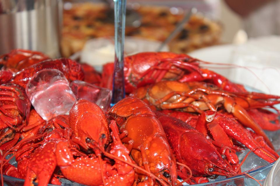 Crayfish, Fest, Chills, Canker, Red, Barrel