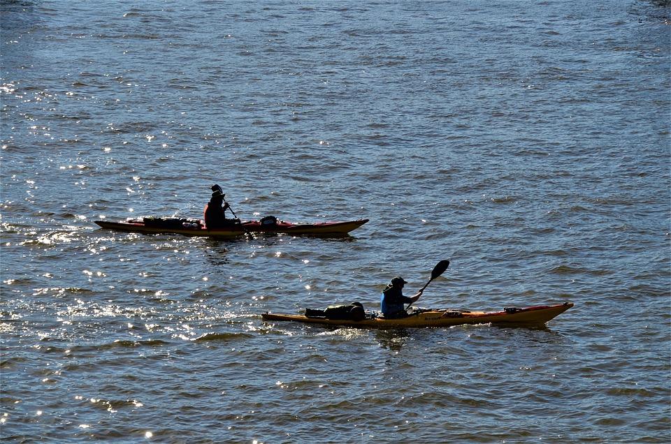 Kayaking, Canoe, Elbe, Flow, Hamburg, Germany