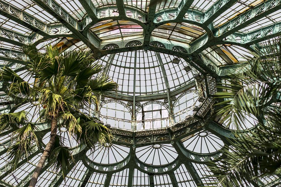 Canopy, Architecture, Greenhouse, Palm