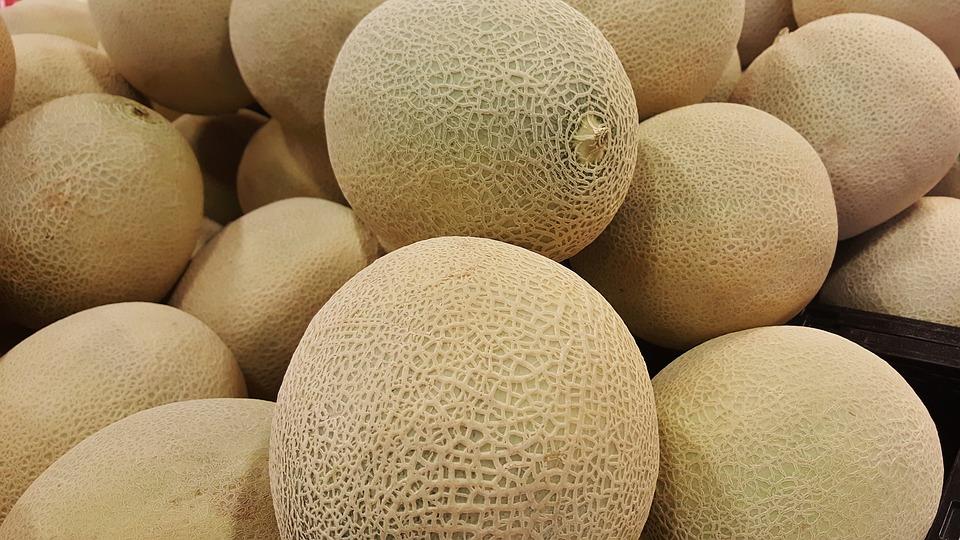 Melon, Cantaloupe, Canteloupe, Rockmelon, Sweet Melon