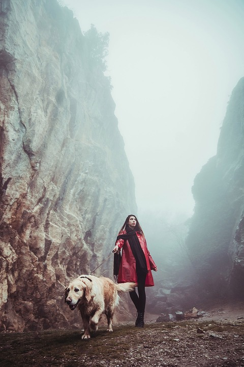 Girl, Fog, Outdoors, Dog, Stroll, Canyon, Rock