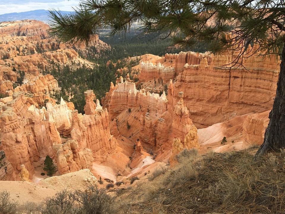 Bryce Canyon, Park, Nature, Canyon, Bryce