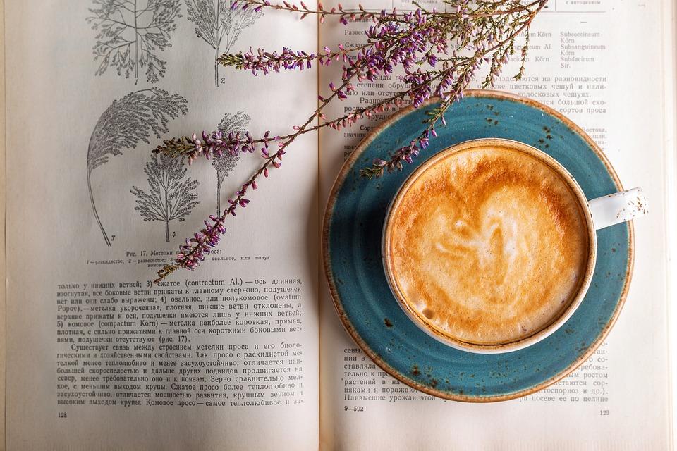 Coffee, Cappuccino, Café, Closeup, Drink, Coffee Cup