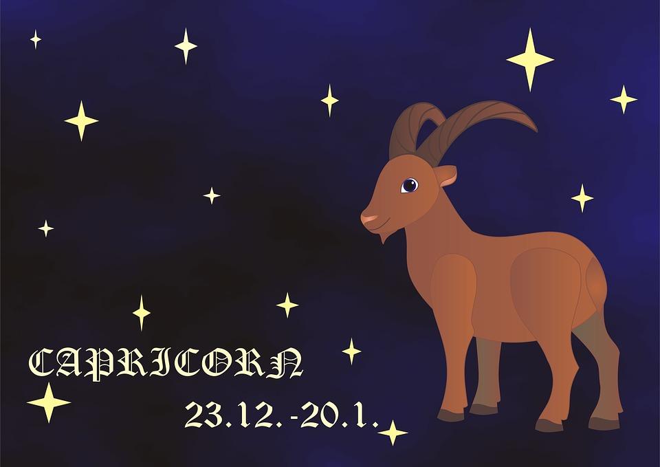 Capricorn, Zodiac, Horoscope, Sign Of The Zodiac, Sign