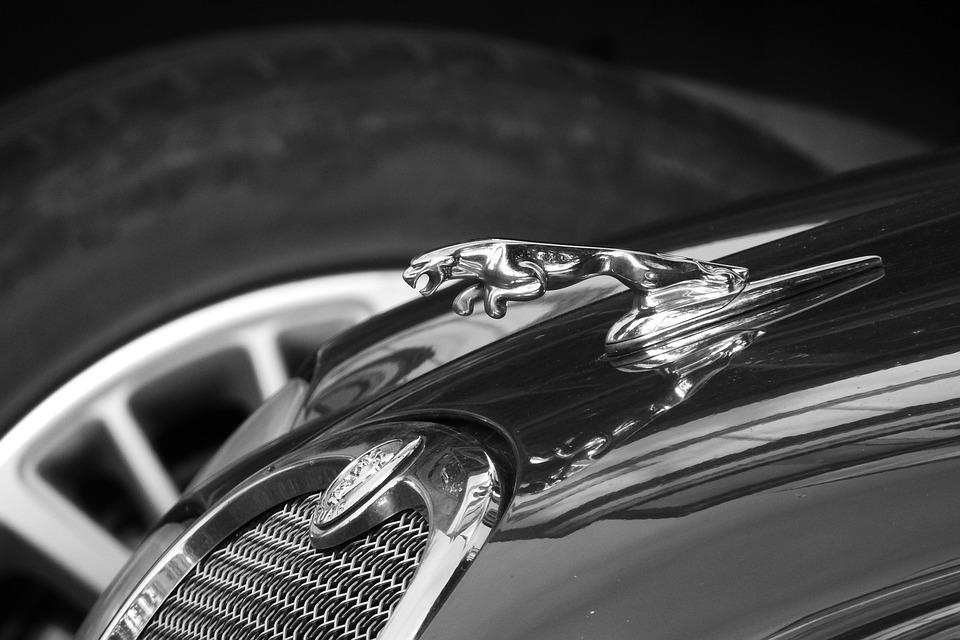 Jaguar, Expensive Car, Car Brand, Auto, Black And White