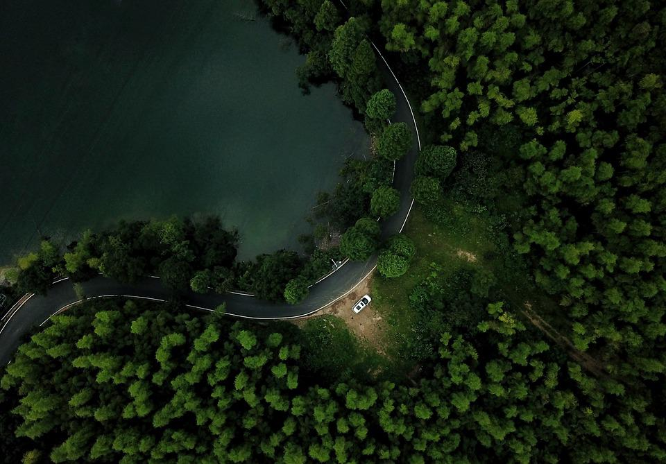 Road, Forest, Green, Trees, Car, Drone, Flight, Lake