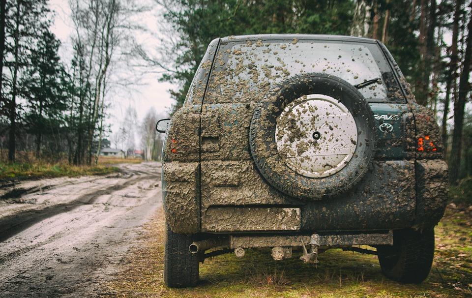 Nature, Field, Car, 4 X 4, Auto, Off Roader